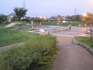 公園夜.JPG